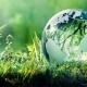 Sustainable Environment